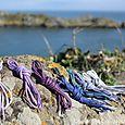 Pointe du grouin lacets de couleur homme (2)