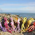 Pointe du grouin lacets de couleur homme (4)