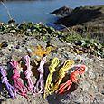 Pointe du grouin lacets de couleur homme (6)
