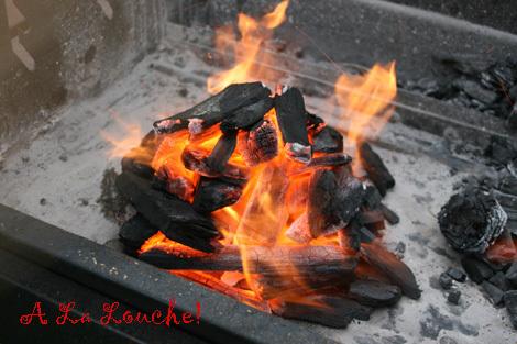 Barbecue_charbon_faire_de_la_brai_6